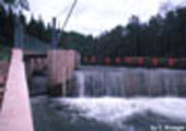 Brule Barrier and Fish Ladder