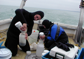 Research - Sediment Samples