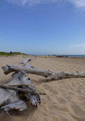 Great Lakes Beach