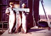 Northern Pike, Historical